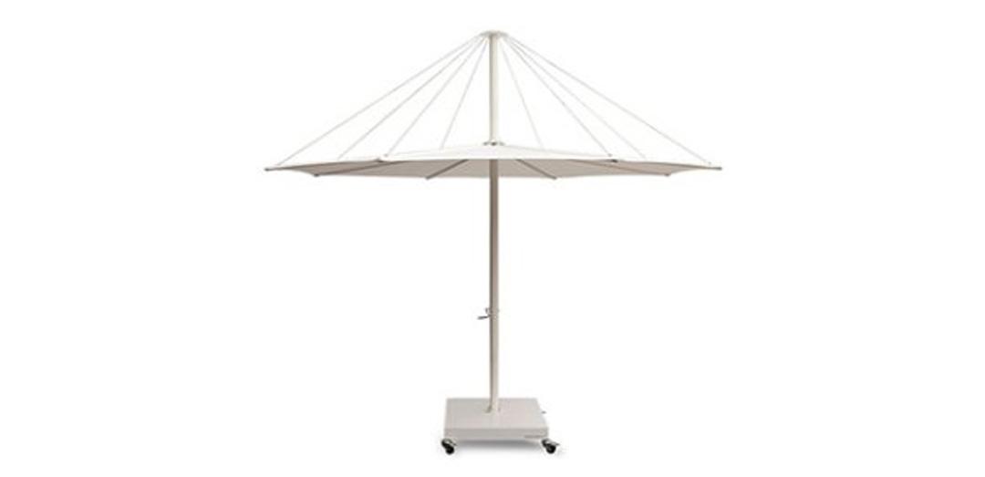 Solis Şemsiyesi